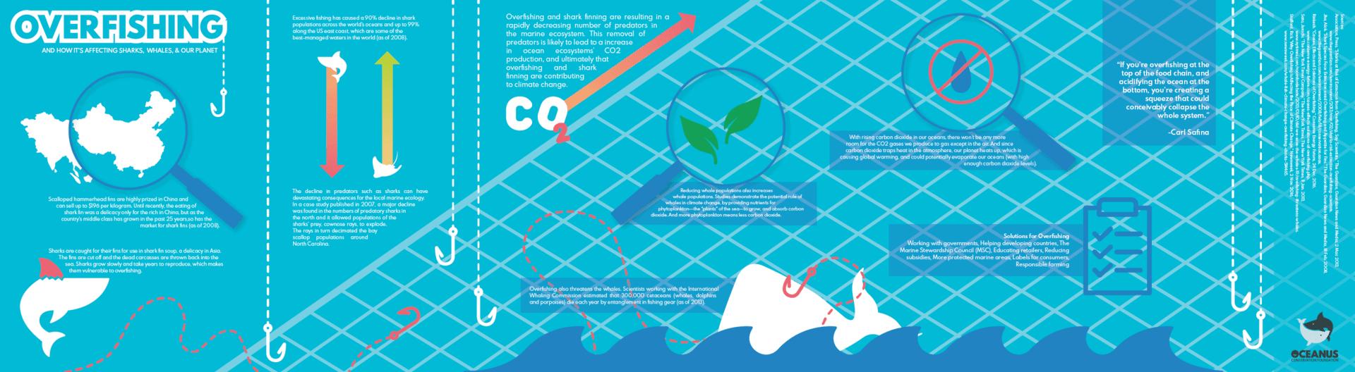 Overfishing Infographic